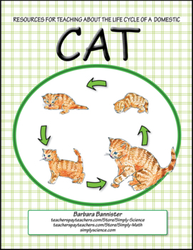 Resources for Teaching about the Life Cycle of a Cat
