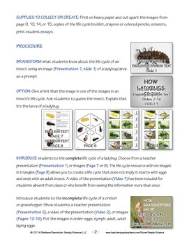Resources for Teaching about the Life Cycle of an Insect