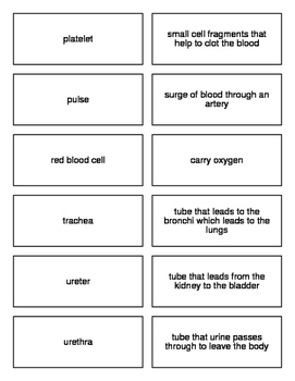 Respiration, Circulation, and Excretion Flash Cards for Biology II