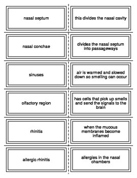 Respiration Flash Cards
