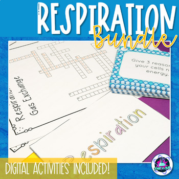 Respiration & Gas Exchange Bundle