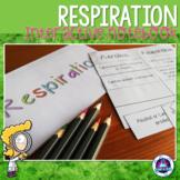 Respiration Interactive Notebook Activities