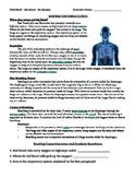 Respiration Reading Comprehension