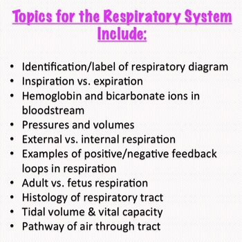 Respiration System Task Cards for Anatomy & Physiology