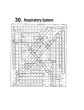 Respiration Word Search or Wordsearch 36 words!