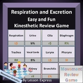 Respiration and Excretion Terminology -- Kinesthetic Review Game
