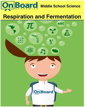 Respiration and Fermentation-Interactive Lesson