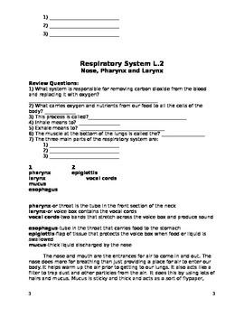 Respiratory Packet