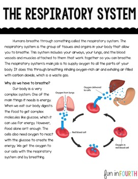 Respiratory System Informational Article and Clicker Book