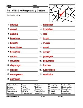 Respiratory System ABC Order Printable