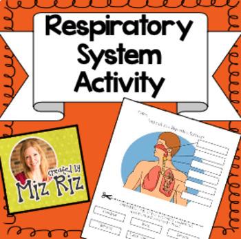 Respiratory System Activity