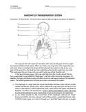 Respiratory System - Anatomy of Respiratory System Worksheet