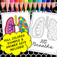 Respiratory System Color by Number