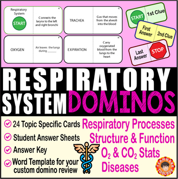 Respiratory System ~DOMINO REVIEW~ 24 Cards + Answer Sheets + Key~ Anatomy