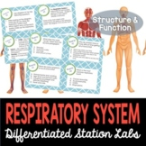 Respiratory System Student-Led Station Lab