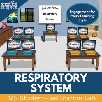 Respiratory System Student-Led Station Lab