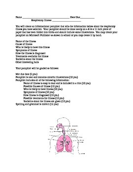 Respiratory System Disease Pamphlet Project