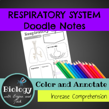 Respiratory System Doodle Notes