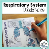 Respiratory System Illustrated Guided Notes - Diagrams - Larynx, Lungs, Alveoli