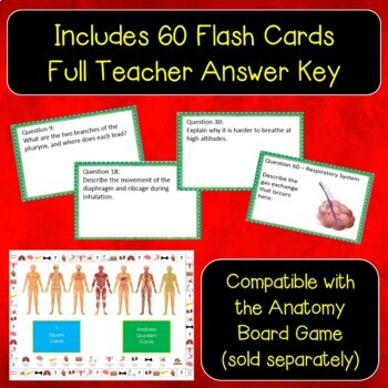 Respiratory System Flash Cards