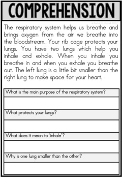 Respiratory System Human Body Systems