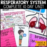 Respiratory System: Functions, Breathing, Lungs, Asthma, Hiccups, etc.