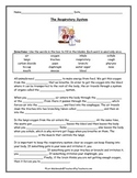 Respiratory System: Guided Reading Activity