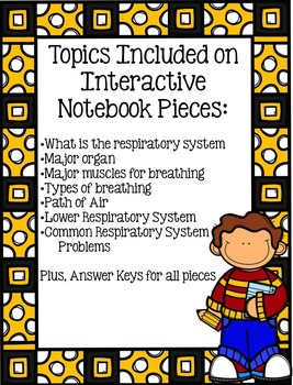 Respiratory System Interactive Notebook