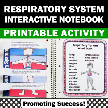 Human Body Interactive Notebook 5th Grade Science Review, Respiratory System