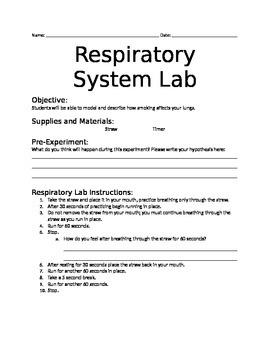 Respiratory System Lab