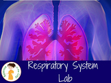 Respiratory System Lab Activity