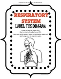Respiratory System Label the Diagram