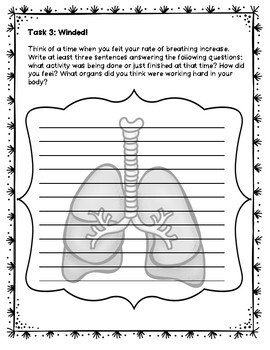 Respiratory System Lessons