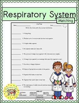 Respiratory System Matching
