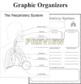 Respiratory System Model