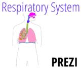 Respiratory System Prezi