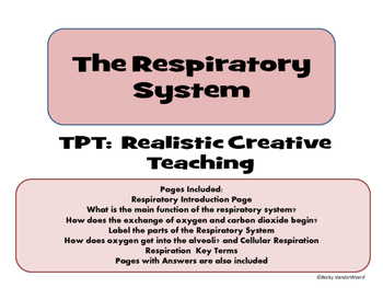 Respiratory System Interactive Notebook Pages