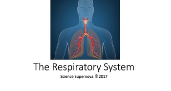 Respiratory System PPT with student note taking guide