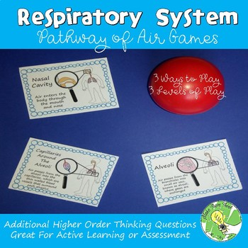 Respiratory System- Pathway of Air Game Cards