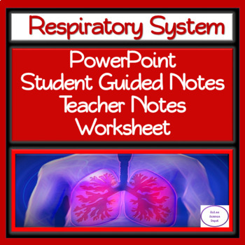 Respiratory System: PowerPoint, Student Guided Notes, Worksheet