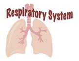 Respiratory System - Presentation