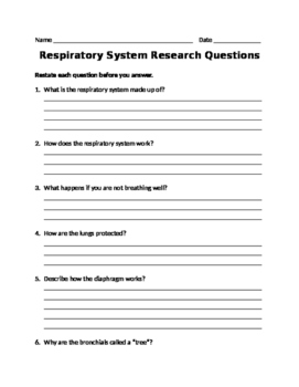 Respiratory System Research Questions