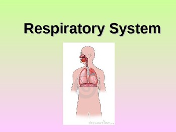 Respiratory System Student Fill-in Notes