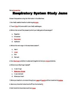 Respiratory System Study Jams
