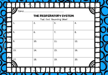 Respiratory System Task Cards