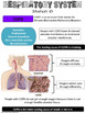 Respiratory System Exhibition Station Task Cards