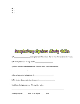 Respiratory System Test with Study Guide and Answer Key