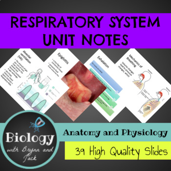 Respiratory System Unit Notes