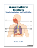Respiratory System Unit: Worksheets, Notes, Activities, Rd