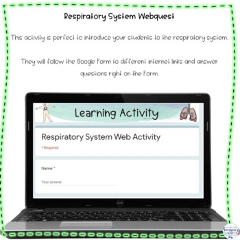 Respiratory System Web Search Internet Activity